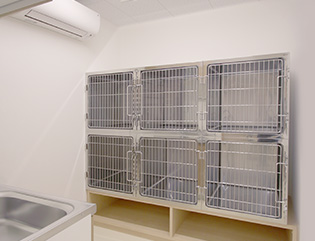 写真:猫用入院室
